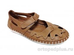 Туфли T2019/12 коричневый